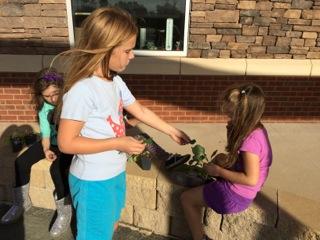Week 6. Students share and taste freshly grown kale